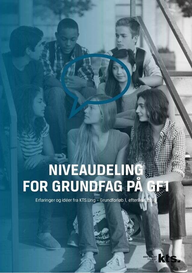 NIVEAUDELING FOR GRUNDFAG PÅ GF1 Erfaringer og idéer fra KTS.Ung – Grundforløb 1, efteråret 2015