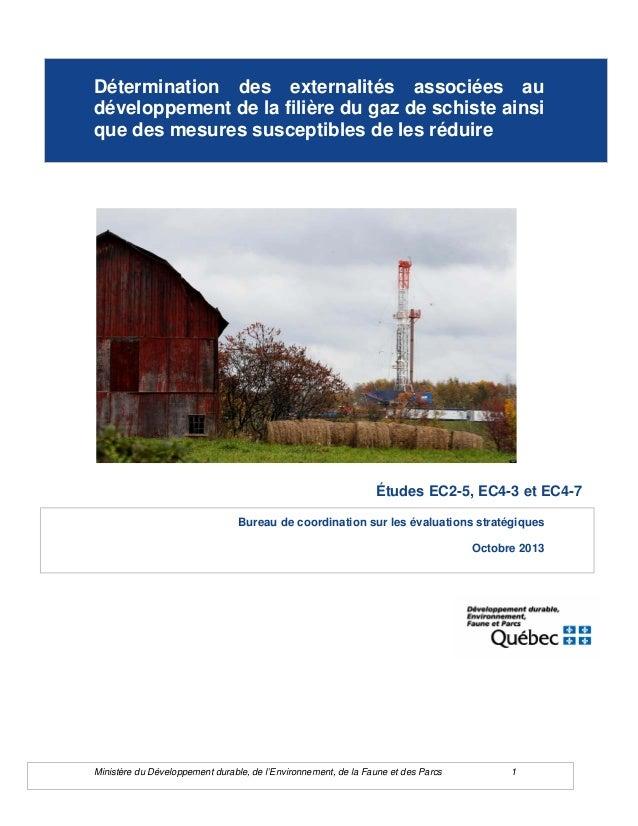 Ministère du Développement durable, de l'Environnement, de la Faune et des Parcs 1 Détermination des externalités associée...