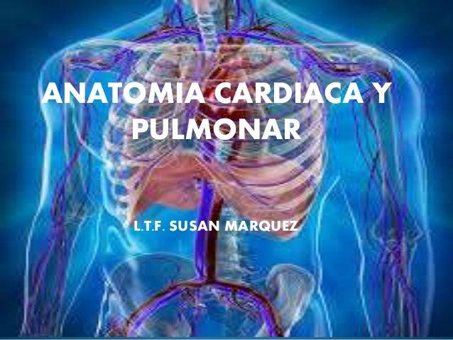 ANATOMIA CARDIACA Y PULMONAR L.T.F. SUSAN MARQUEZ