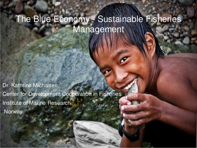 The Blue Economy - Sustainable Fisheries                  ManagementDr. Kathrine MichalsenCenter for Development Cooperati...