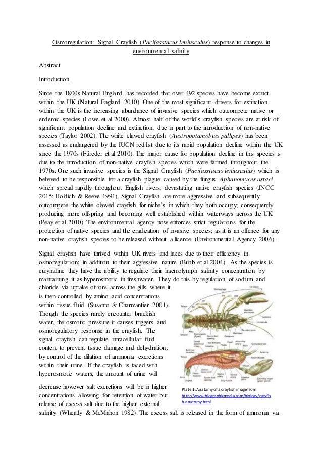 Osmoregulation Signal Crayfish (Pacifasstacus leniusculus) response t…
