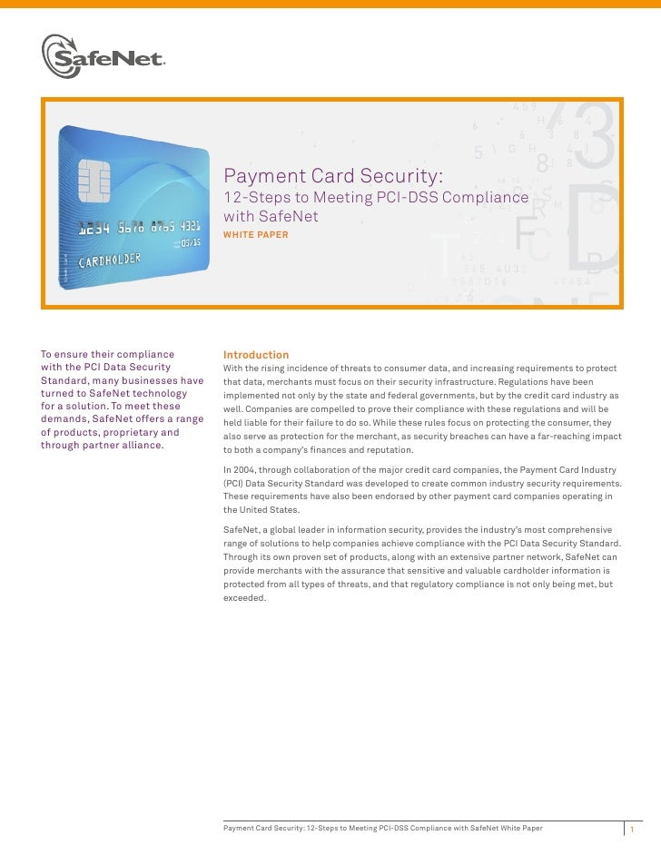 Payment Card Security: 12-Steps to Meeting PCI-DSS