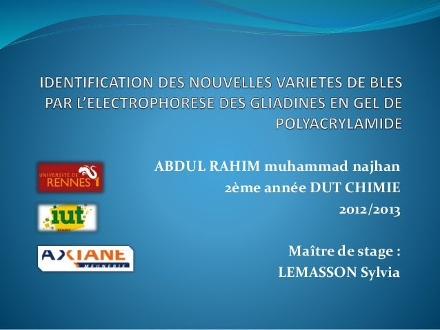 ABDUL RAHIM muhammad najhan 2ème année DUT CHIMIE 2012/2013 Maître de stage : LEMASSON Sylvia