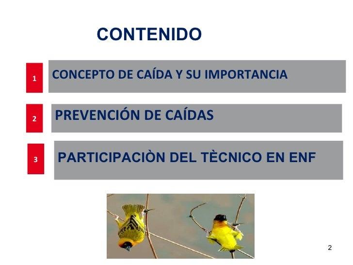 CONTENIDO1   CONCEPTO DE CAÍDA Y SU IMPORTANCIA2   PREVENCIÓN DE CAÍDAS3   PARTICIPACIÒN DEL TÈCNICO EN ENF               ...