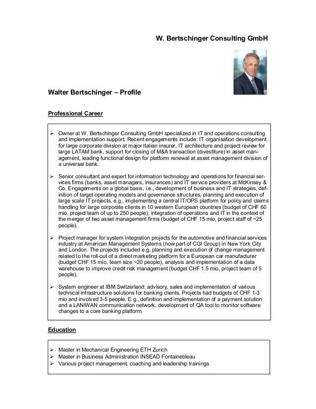 W bertschinger consulting profile service portfolio for Design consultancy company profile