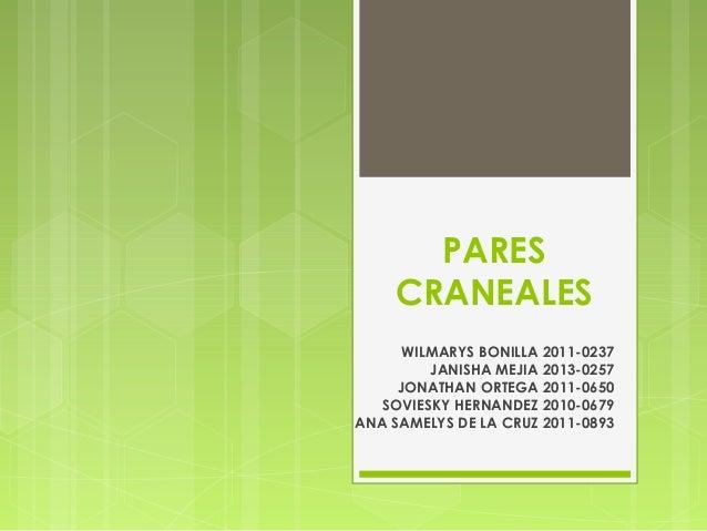 PARES  CRANEALES  WILMARYS BONILLA 2011-0237  JANISHA MEJIA 2013-0257  JONATHAN ORTEGA 2011-0650  SOVIESKY HERNANDEZ 2010-...