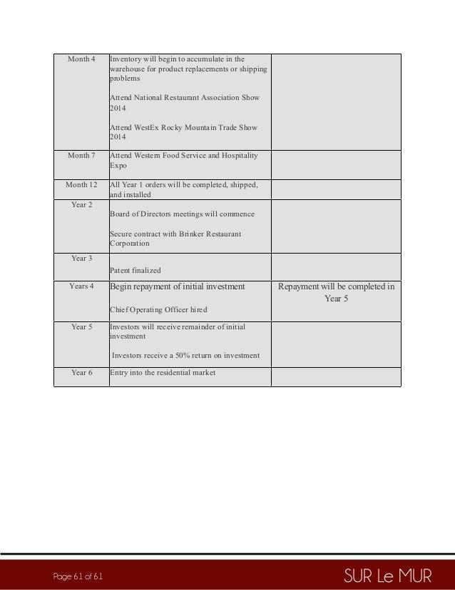 Sur Le Mur Business Plan PDF