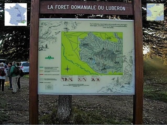 Vallée de la Durance