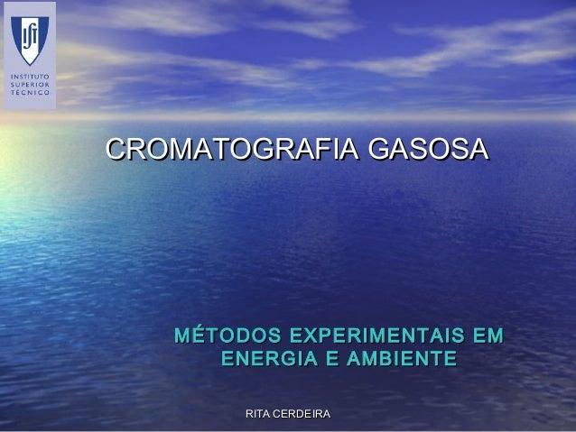 RITA CERDEIRARITA CERDEIRA CROMATOGRAFIA GASOSACROMATOGRAFIA GASOSA MÉTODOS EXPERIMENTAIS EMMÉTODOS EXPERIMENTAIS EM ENERG...