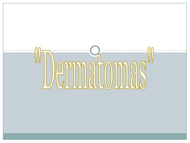 DermatomaDermatoma Definición:Definición: *Zona de la piel inervada por la raíz dorsal de un nervio espinal. Corresponden ...