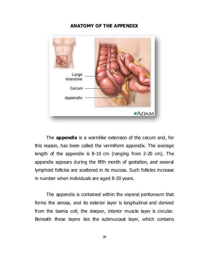appendicitis case study View and download powerpoint presentations on case study of appendicitis ppt find powerpoint presentations and slides using the power of xpowerpointcom, find free presentations about case study of appendicitis ppt.