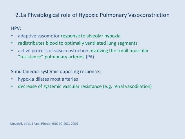 Viagra vasoconstriction