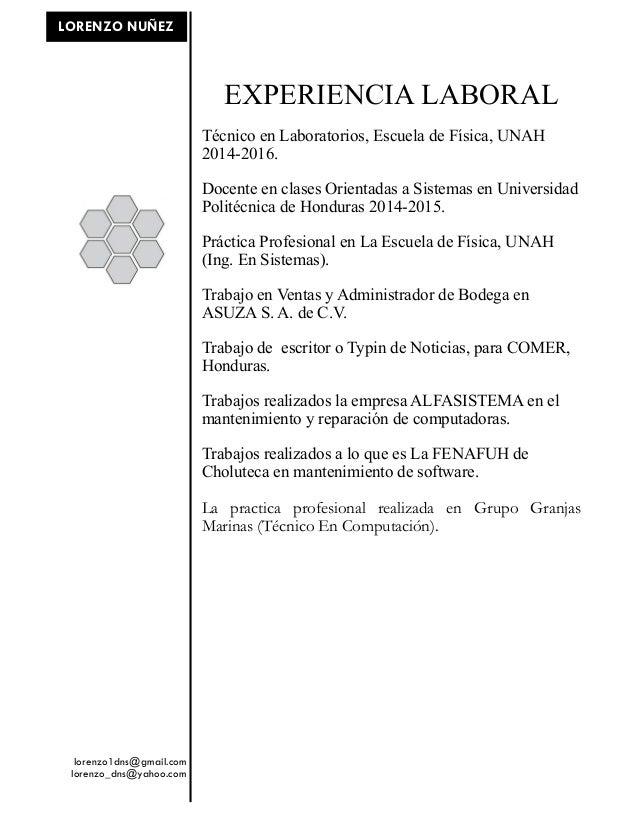 Curriculum Vitae Lorenzo David 2016