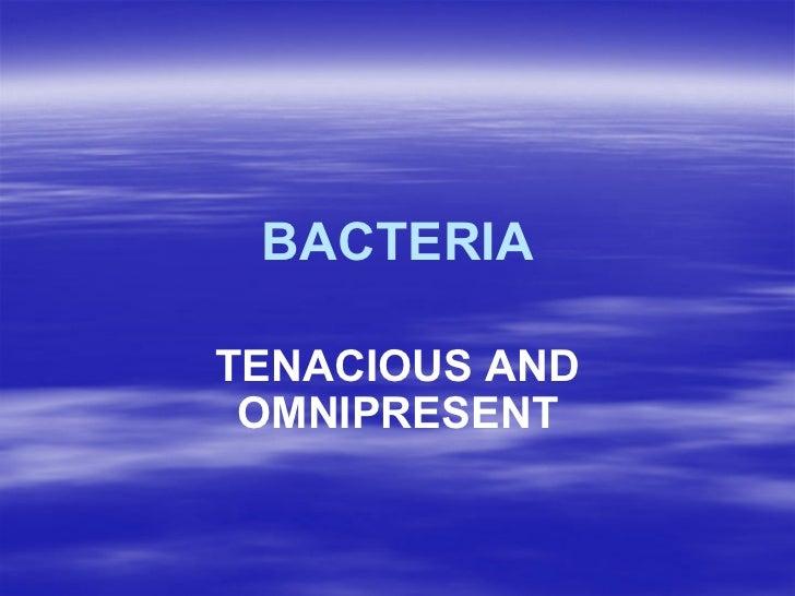 BACTERIA TENACIOUS AND OMNIPRESENT