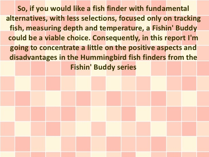a small number of pluses and minuses of the fishin' buddy depth finde…, Fish Finder