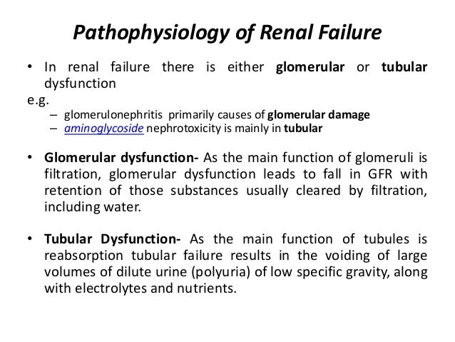 Renal failure. Ppt download.