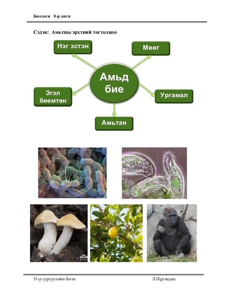 Биологи 8-р ангиСэдэв: Амьтны эрхтний тогтолцоо           Нэг эстэн              Мөөг                        Амьд    Эгэл ...