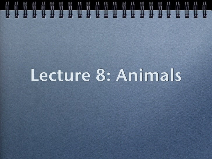 Lecture 8: Animals