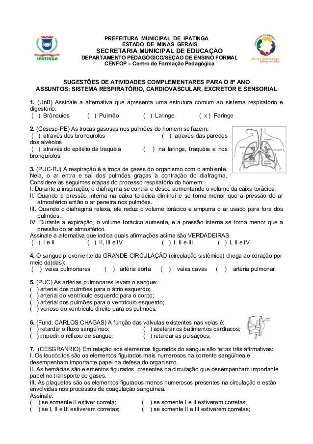 PREFEITURA MUNICIPAL DE IPATINGA ESTADO DE MINAS GERAIS  SECRETARIA MUNICIPAL DE EDUCAÇÃO DEPARTAMENTO PEDAGÓGICO/SEÇÃO DE...