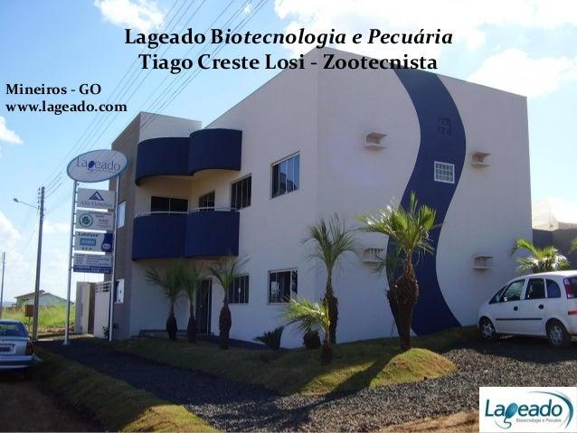 Lageado Biotecnologia e Pecuária Tiago Creste Losi - Zootecnista Mineiros - GO www.lageado.com