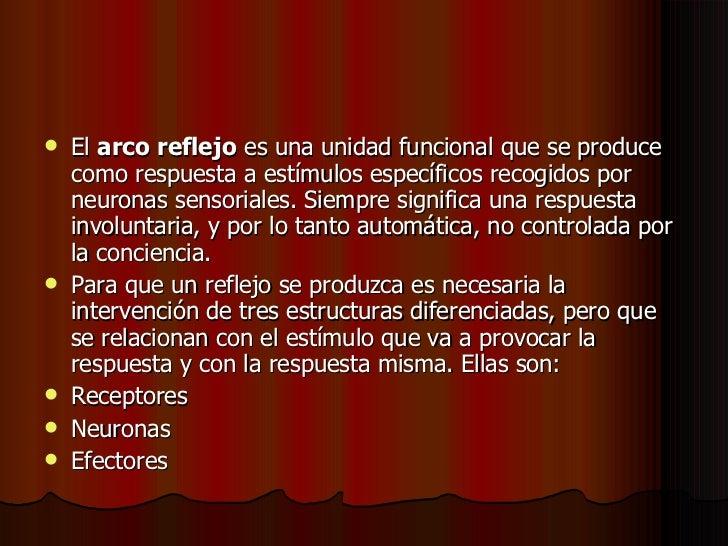 8.Arco Reflejo