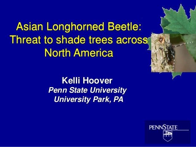 Asian Longhorned Beetle: Threat to shade trees across North America Kelli Hoover Penn State University University Park, PA
