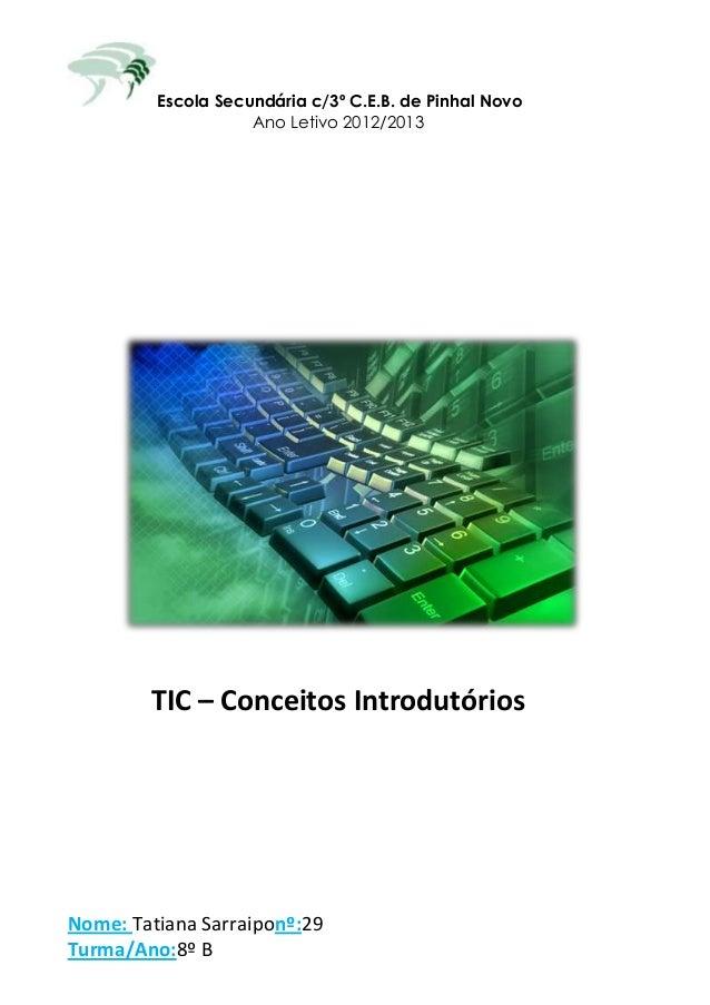 Escola Secundária c/3º C.E.B. de Pinhal Novo                    Ano Letivo 2012/2013        TIC – Conceitos IntrodutóriosN...