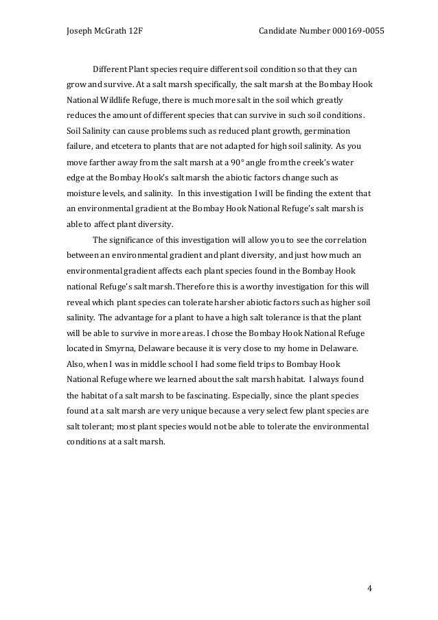 Essays on prostitutions