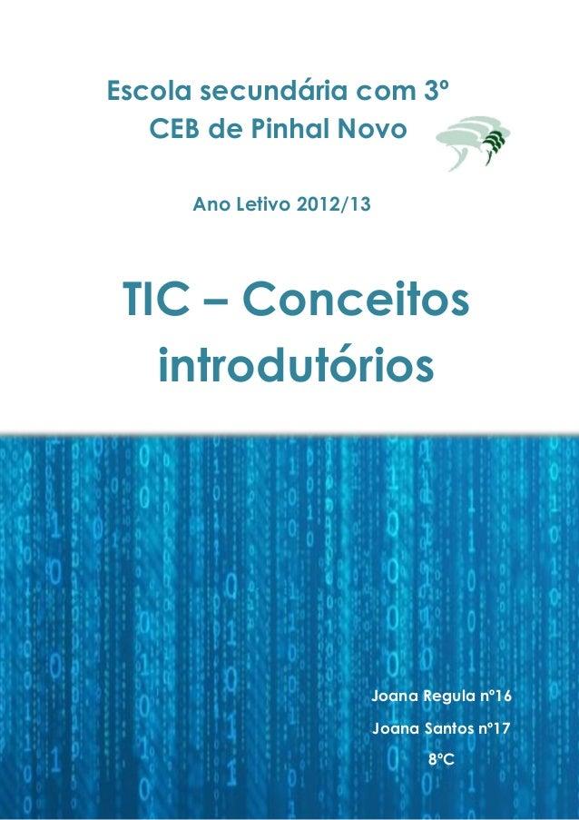 Escola secundária com 3º CEB de Pinhal Novo Ano Letivo 2012/13 Joana Regula nº16 Joana Santos nº17 8ºC TIC – Conceitos int...
