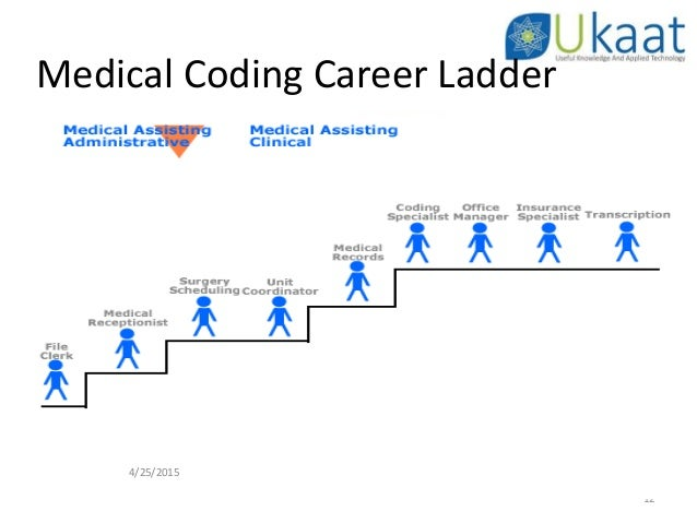 medical coding career ladder 4 template 1 coder course dubai