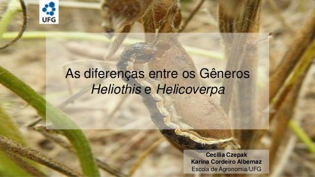 As diferenças entre os Gêneros Heliothis e Helicoverpa  Cecilia Czepak Karina Cordeiro Albernaz Escola de Agronomia/UFG