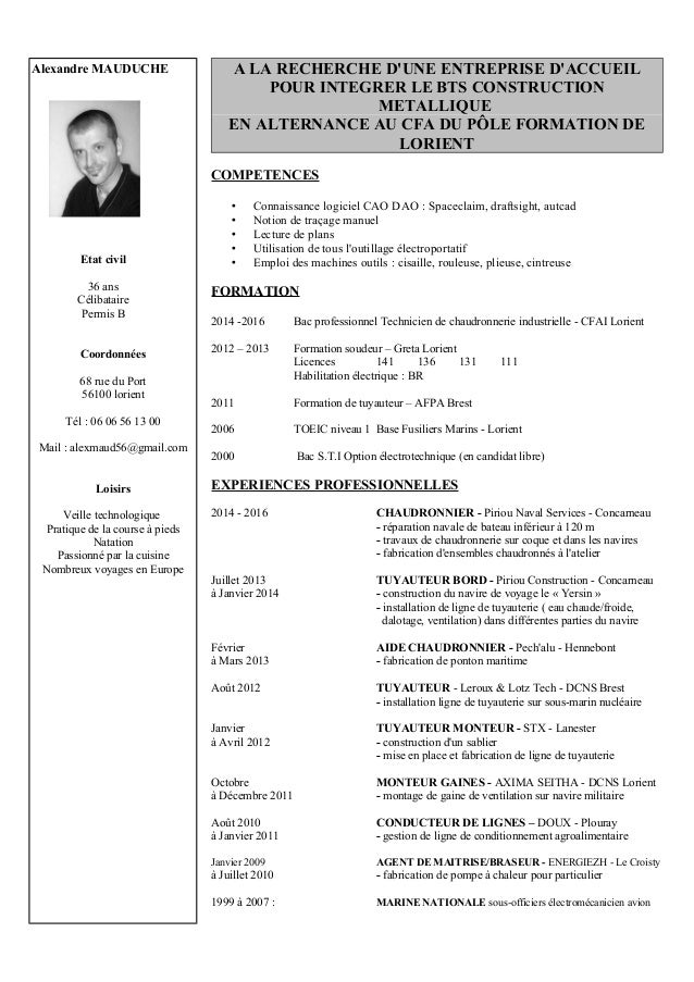 Synonym for curriculum vitae in english