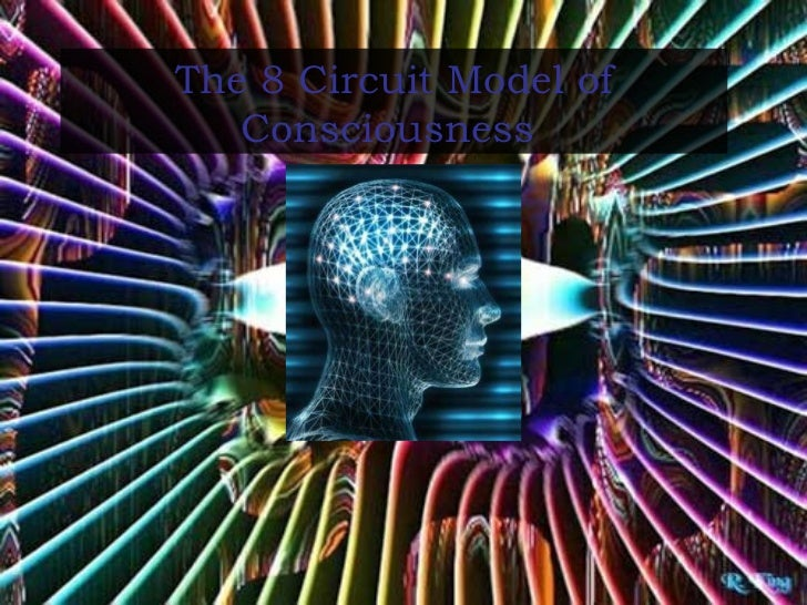 The 8 Circuit Model of Consciousness