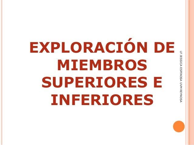 EXPLORACIÓN DE MIEMBROS SUPERIORES E INFERIORES LFJESSICAESPINOSAUVMREYNOSA