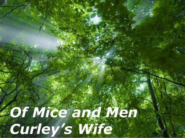 Of Mice and MenCurley's Wife       Free Powerpoint Templates                                   Page 1