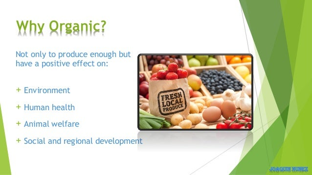 Example About Transportation Natural Foods