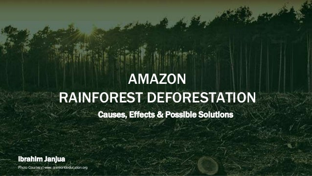 causes and effects of the amazons deforestation What is deforestation the destruction of natural forests because of cutting trees, logging, making space for cattle grazing, mining, extraction of oil, building dams and population expansion is known as deforestation.