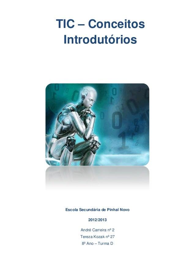TIC – Conceitos Introdutórios Escola Secundária de Pinhal Novo            2012/2013        André Carreira nº 2        Tere...