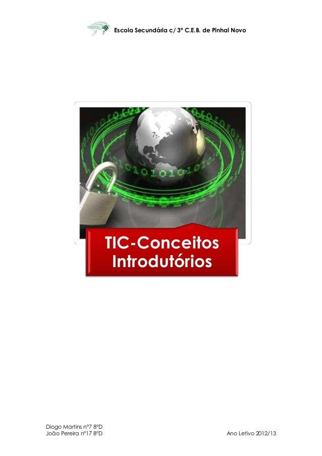 Escola Secundária c/ 3º C.E.B. de Pinhal Novo                        TIC-Conceitos                         IntrodutóriosDi...
