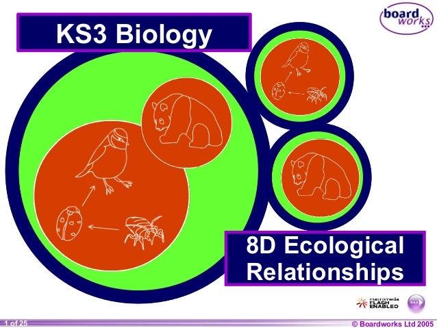 © Boardworks Ltd 20041 of 20 © Boardworks Ltd 20051 of 25 KS3 Biology 8D Ecological Relationships