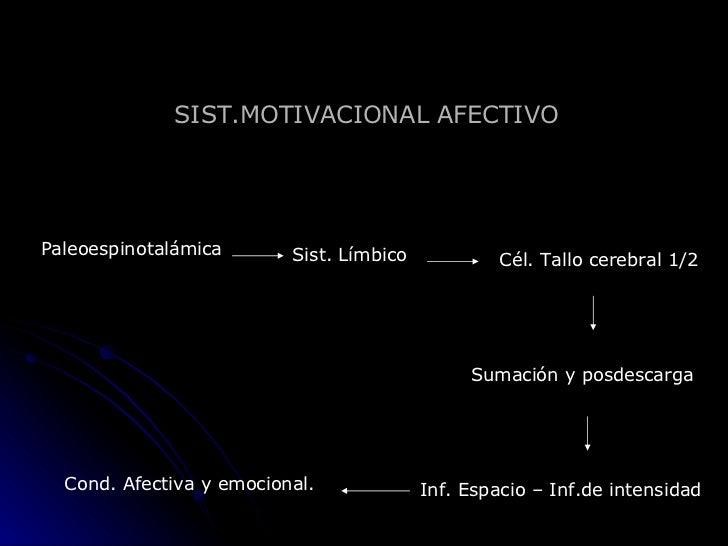 SIST.MOTIVACIONAL AFECTIVO Paleoespinotalámica Sist. Límbico Cél. Tallo cerebral 1/2 Sumación y posdescarga Inf. Espacio –...