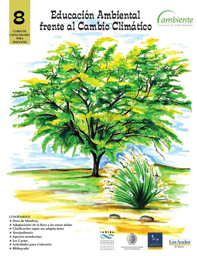 8 I A D I Z A Dirección General de Escuelas Gobierno de Mendoza CONTENIDOS Flora de Mendoza Adaptaciones de la flora a l...