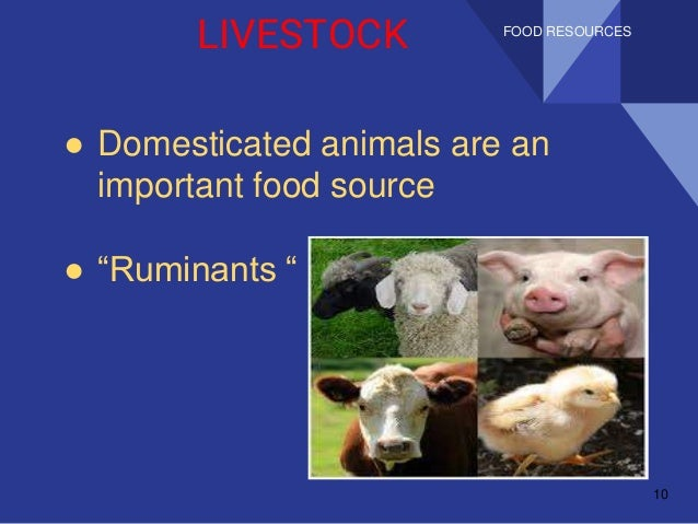 an introduction of food intake in growth of animals Feed intake in feedlot cattle  selection pressure for growth rate 112 (3)  predicting feed intake of food-producing animals.