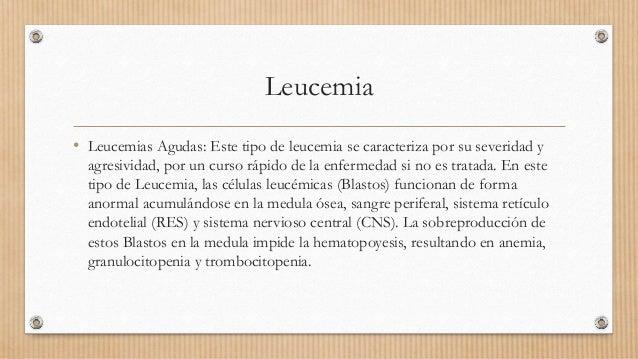 Leucemia • Leucemias Agudas: Este tipo de leucemia se caracteriza por su severidad y agresividad, por un curso rápido de l...