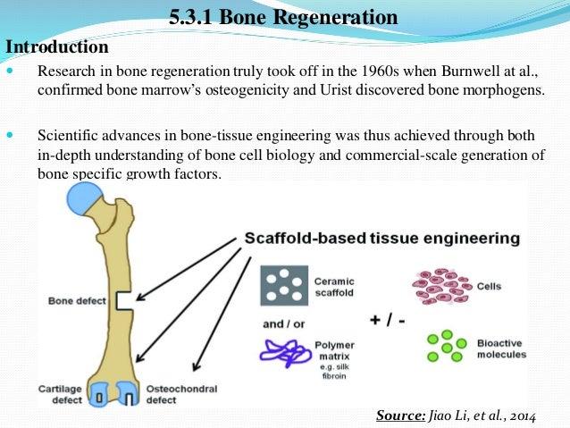 Tissue Engineering Slides
