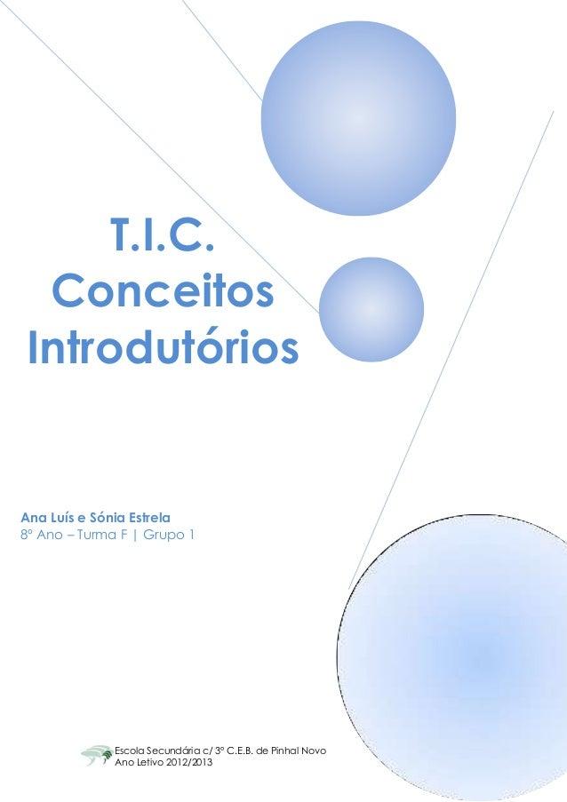 T.I.C. ConceitosIntrodutóriosAna Luís e Sónia Estrela8º Ano – Turma F | Grupo 1             Escola Secundária c/ 3º C.E.B....