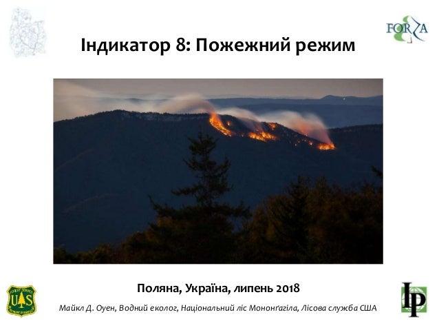 Індикатор 8: Пожежний режим Поляна, Україна, липень 2018 Майкл Д. Оуен, Водний еколог, Національний ліс Мононґагіла, Лісов...