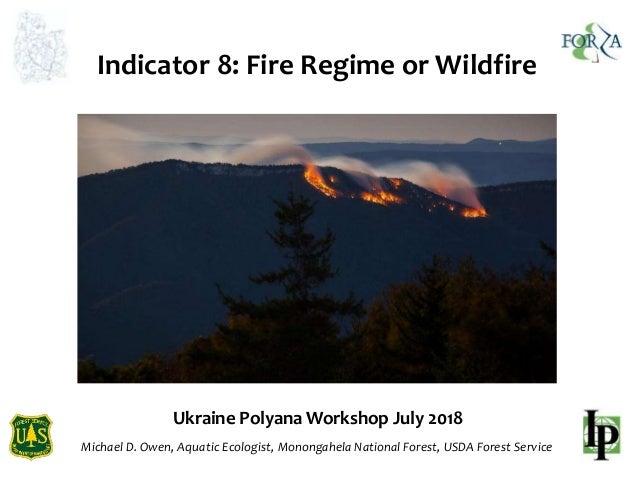 Ukraine Polyana Workshop July 2018 Michael D. Owen, Aquatic Ecologist, Monongahela National Forest, USDA Forest Service In...