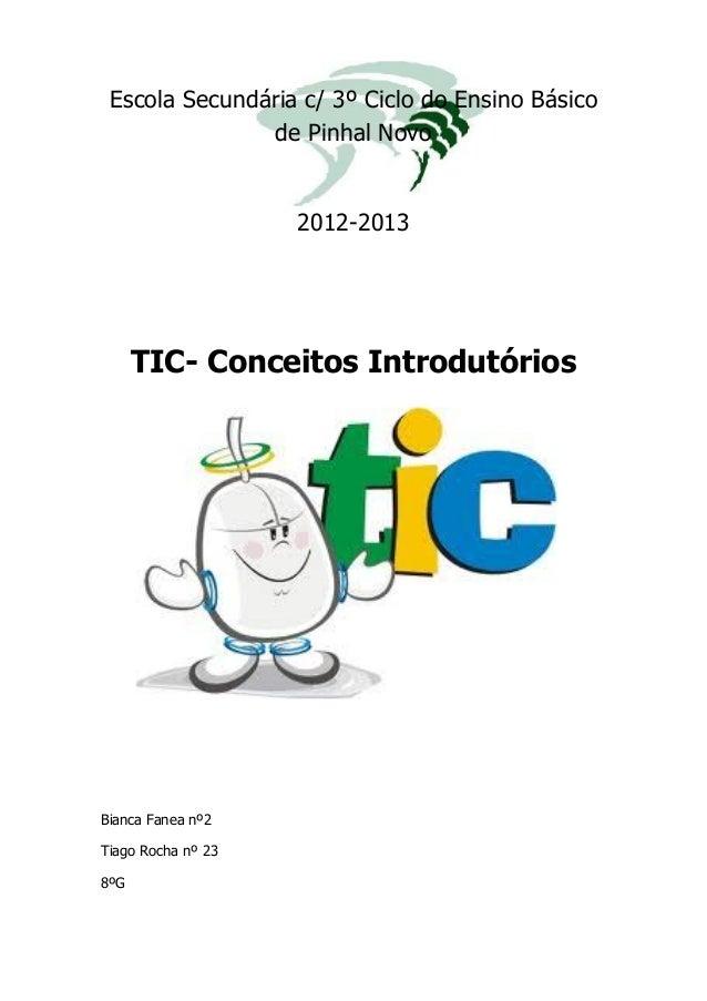 Escola Secundária c/ 3º Ciclo do Ensino Básico de Pinhal Novo 2012-2013 TIC- Conceitos Introdutórios Bianca Fanea nº2 Tiag...