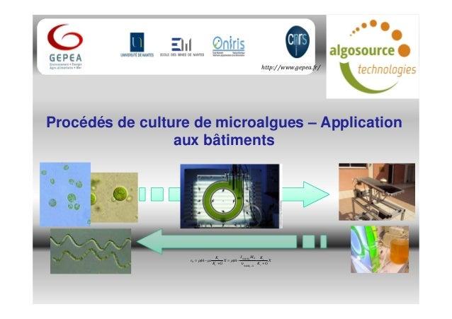 X GK KMJ AρX GK K µsAρr r r XNADH XNADH r r X + −= + −= −2 2 υ φφ http://www.gepea.fr/ Procédés de culture de microalgues ...
